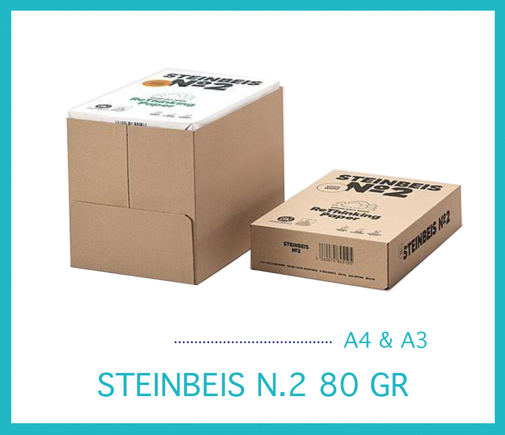 STEINBEIS N.2
